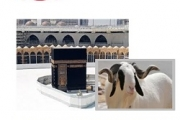 Bonne fête de l'Aïd El-Kebir